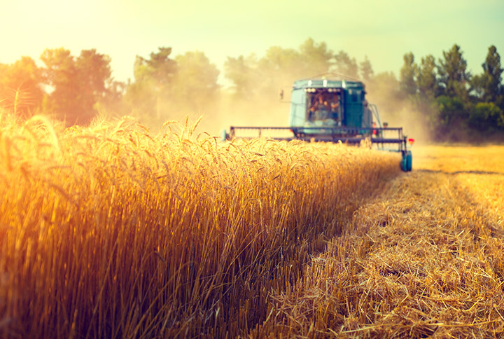 The importance of motor testing in the agriculture industry